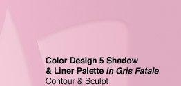 Color Design 5 Shadow & Liner Palette in Gris Fatale | Contour & Sculpt