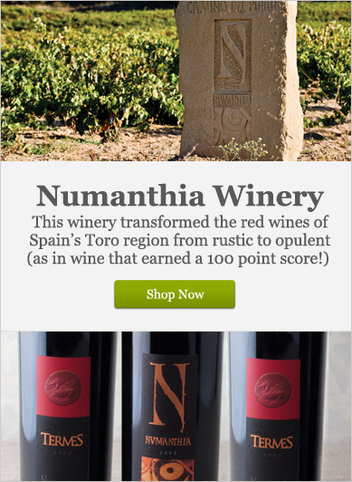 Numanthia Winery - Shop Now