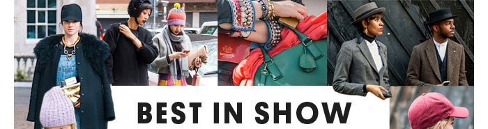 BEST IN SHOW - Shop the Feature