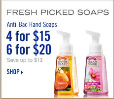 Anti-Bac Hand Soap - 4 for $15