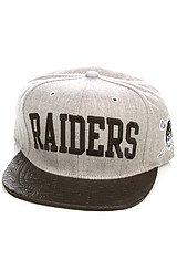 The Oakland Raiders Basic Snapback Cap in Grey