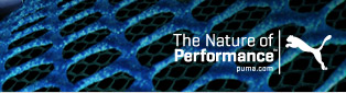 THE NATURE OF PERFORMANCE