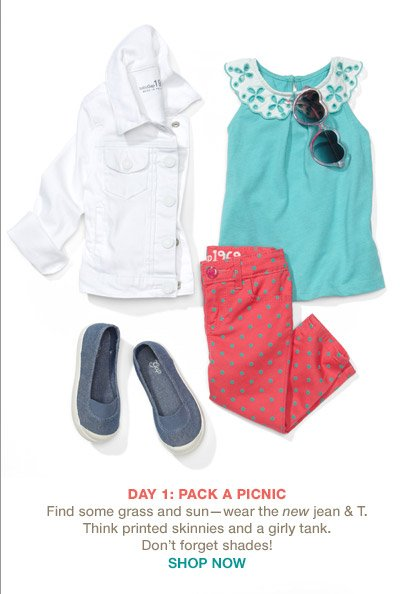 DAY 1: PACK A PICNIC | SHOP NOW