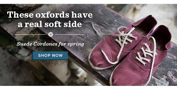 Suede cordones for spring - shop now