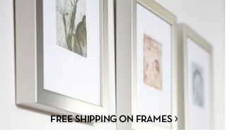 FREE SHIPPING ON FRAMES