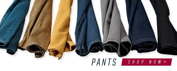 Shop etnies pants