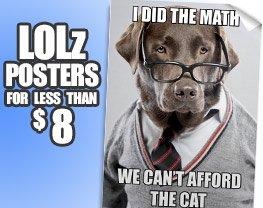 LOLz for Less Than 8 Bucks!