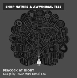 Nature & Awwnimal Tees