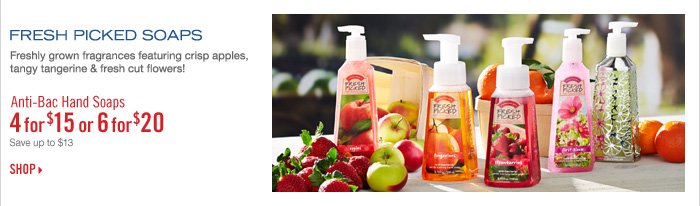 Ant-Bac Hand Soaps - 4 for $15