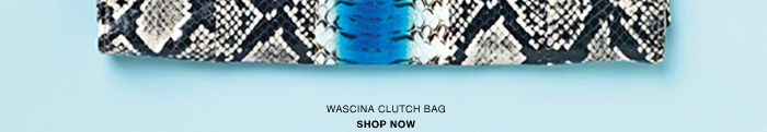Wascina watersnake clutch
