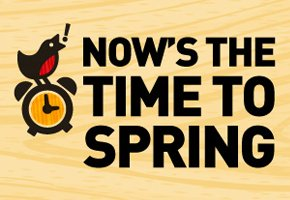 Now's the Time to Spring