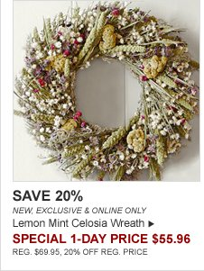 SAVE 20% - NEW, EXCLUSIVE & ONLINE ONLY - Lemon Mint Celosia Wreath - SPECIAL 1-DAY PRICE $55.96 - REG. $69.95, 20% OFF REG. PRICE