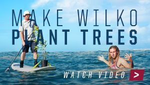 Watch the Make Wilko Plant Trees video