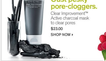 Oust pesky pore cloggers Clear Imporvememnt Active charcoal mask to clear pores 23 dollars shop now