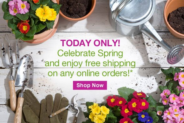 Today only! Celebrate Spring and enjoy free shipping on any online orders!
