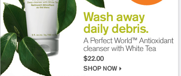 Wash away daily debris A perfect World Antioxidant cleanser with White Tea 22 dollars shop now