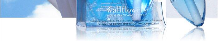 Wallflowers 2–Pack Refills – $6