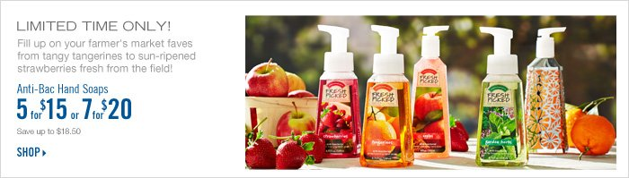 Anti–Bac Hand Soaps – 5 for $15
