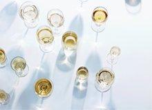 For the Wine Aficionado Glasses, Gadgets, & More
