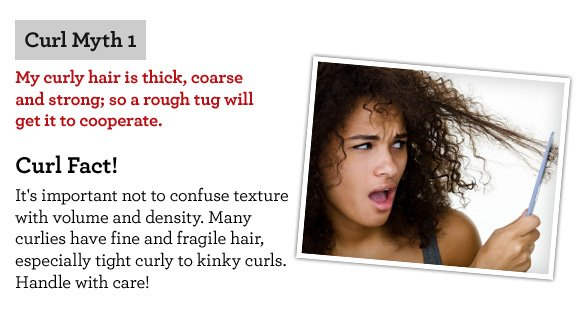 Curl Myth  1 My curly hair is thick, coarse and strong; so a rough tug will get it to cooperate. Curl Fact! It's important not to confuse texture with volume and density. Many  curlies have fine and fragile hair, especially tight curly to kinky curls. Handle with care!