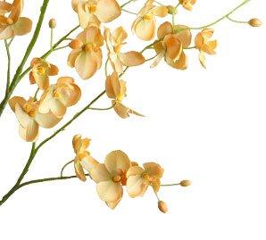 Faux Phalaenopsis Sprays