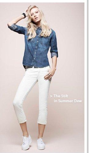 The Stilt Summer Dew