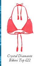 Crystal Diamante Bikini Top