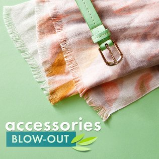 Accessories Blow-Out