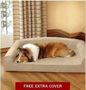 FREE EXTRA COVER