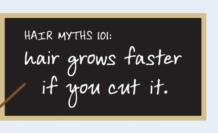 Hair myths 101: Hair grows faster if you cut it.