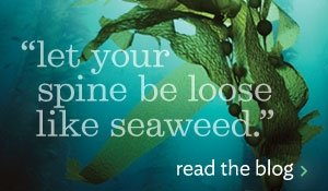 let your spine be loose like seaweed