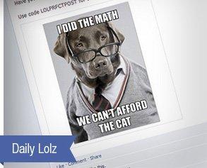 Daily Lolz