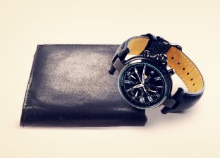 Steinhausen Wallets & Watches