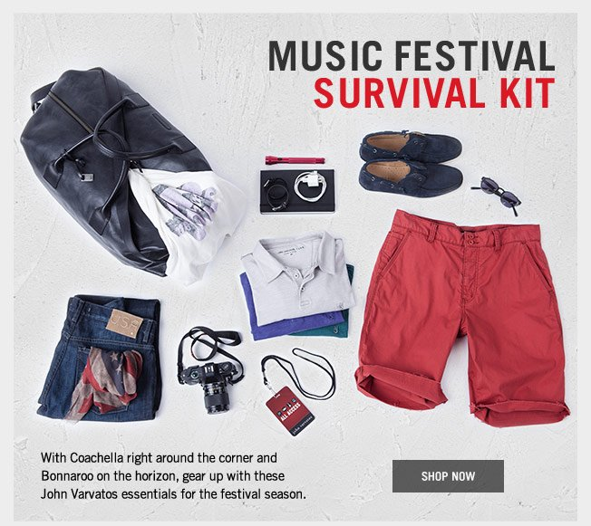 Music Festival Survival Kit