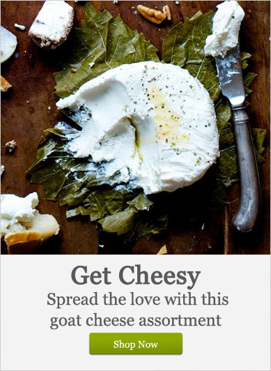 Get Cheesy - Shop Now