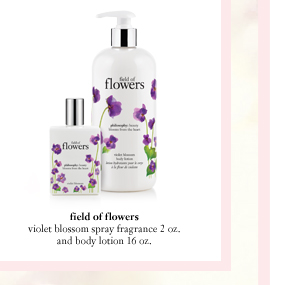 field of flowers, violet blossom