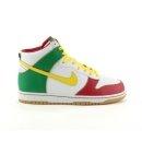 Mens Nike Dunk Hi 6.0 Athletic Shoe