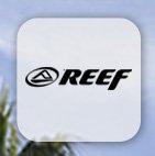 Shop Reef