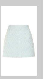 Mint Mesh Overlay Mini Skirt