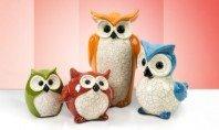Sensational, Irresistible OWLS! - Visit Event