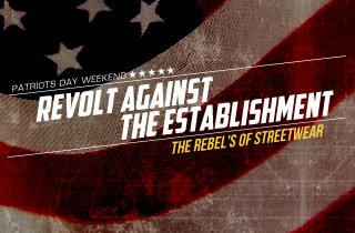 Revolt Against The Establishment