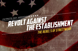 Revolt Against The Establishment