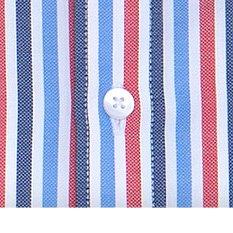 Somerset Stripe Shirt
