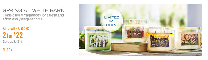 3-Wick Candles - 2 for $22