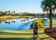 PGA National Resort & Spa Palm Beach Gardens, FL