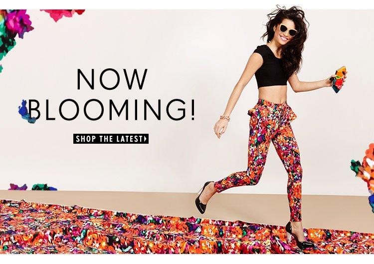 Shop the latest