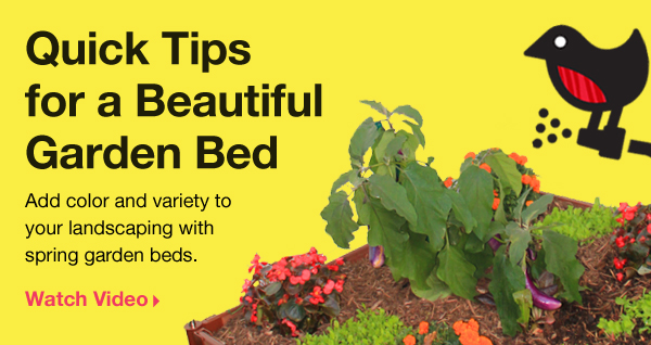 Quick Tips for a Beautiful Garden Bed. Add color and variety to your landscaping with spring garden beds. Watch video.