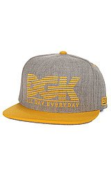 The All Day City Snapback in Gold