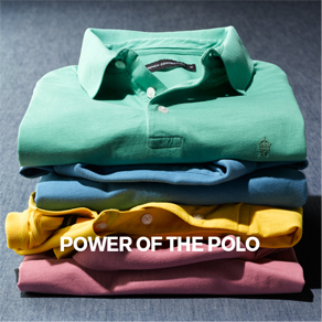 POWER OF THE POLO