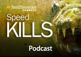 Speed Kills - Podcast
